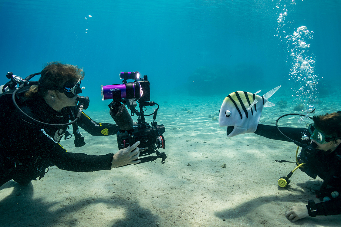 """<p """"="""""""">An underwater photograph of two divers, one of them operating a puppet of a fish and the other filming the scene."""