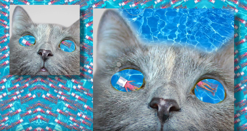 A swimmer is seen through a cat's eyes.
