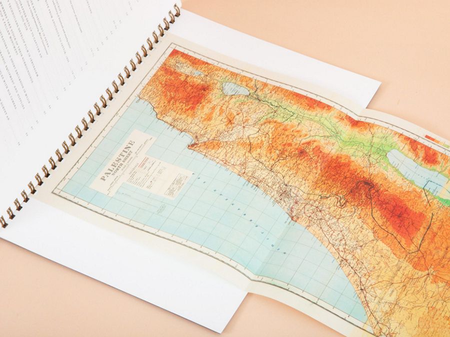 An illustrated map of Palestine.  A pullout map of Palestine .