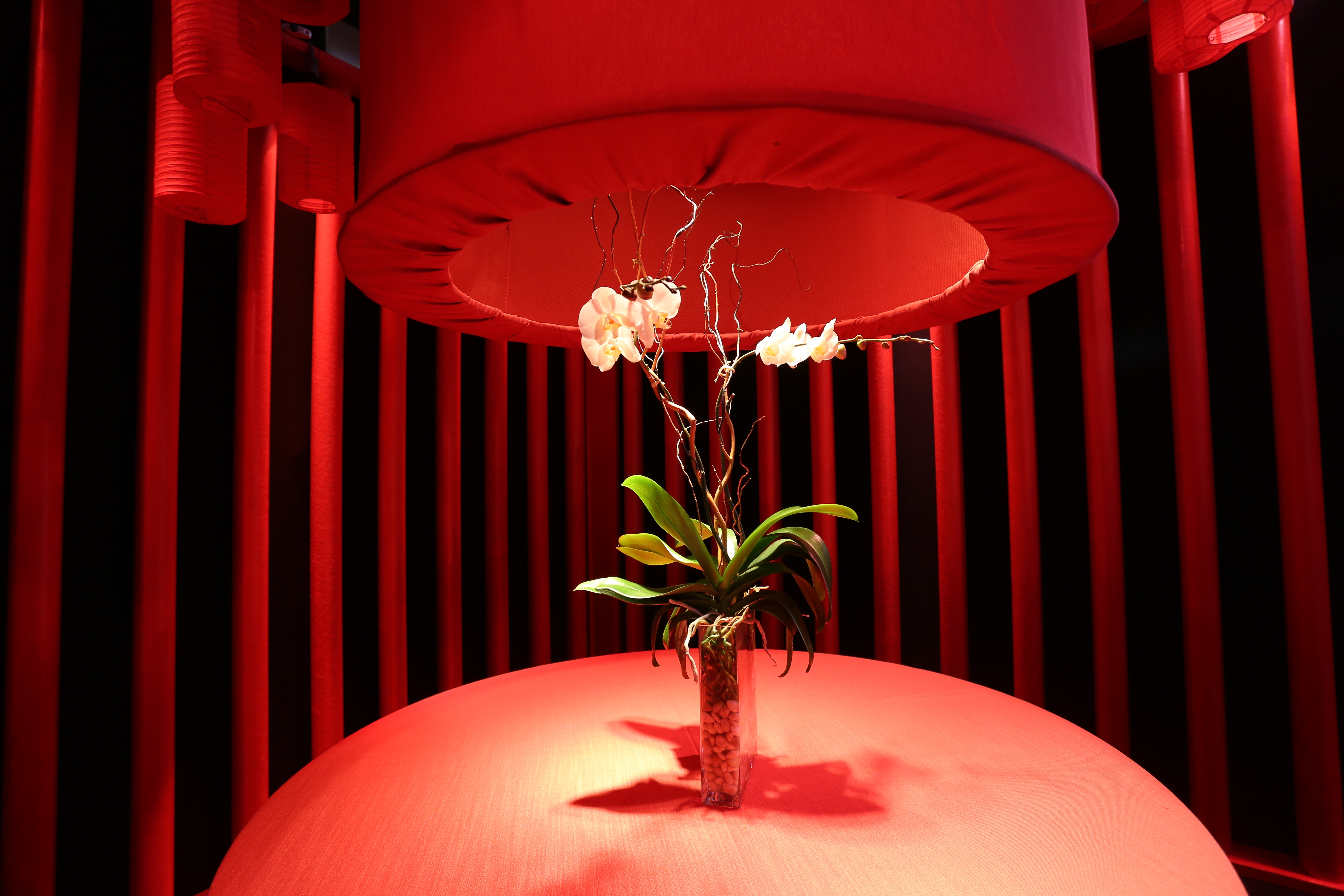 flowers in a vase in a red room on a table